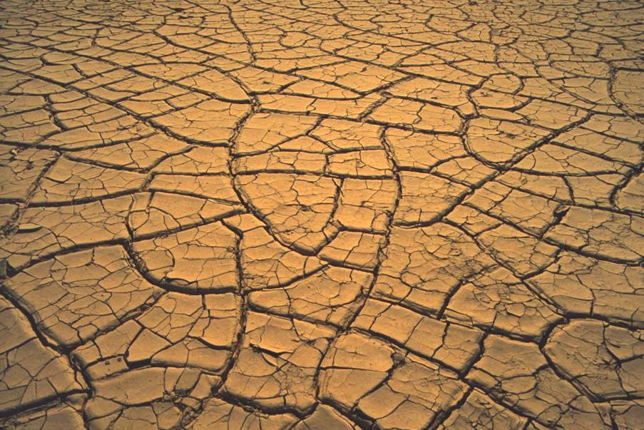 Billedresultat for dry skin sand
